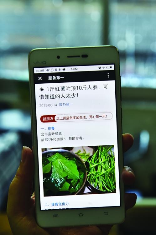 这些微信旅行青蛙靠谱?-桂林日报社攻略养生大全秘籍数字+ssr图片