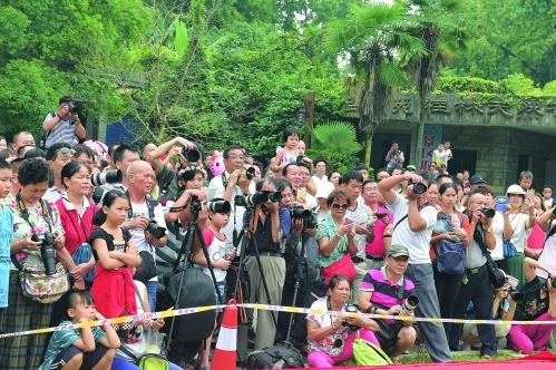 国庆节 公园景区游人如织
