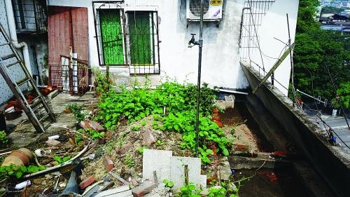 天台砌起荷花池楼下住户频渗水