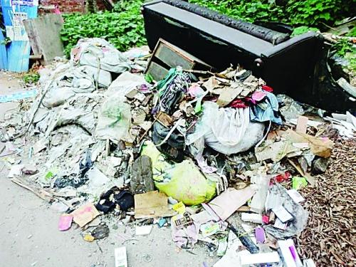 樟木小学附近路边的一大堆垃圾,其中还有旧猜车图看小学生图片