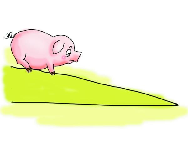 桂林猪肉价格降了图片