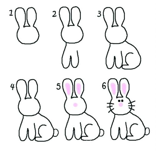 一只很可爱的小兔子